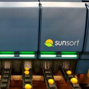 A Sunkist Fruit Sorter in a Citrus Packing Facility with a Thermoformed Enclosure